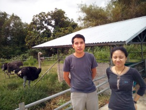 008 Ostrich Farm at Hacienda de Naga